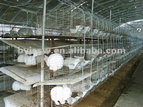Cheap Indoor Rabbit Hutch Commercial Rabbit Cages For 12 Rabbits 24 Rabbits Buy