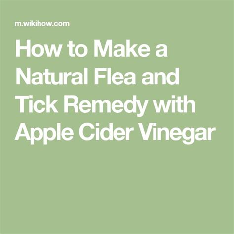 make a flea and tick remedy with apple cider
