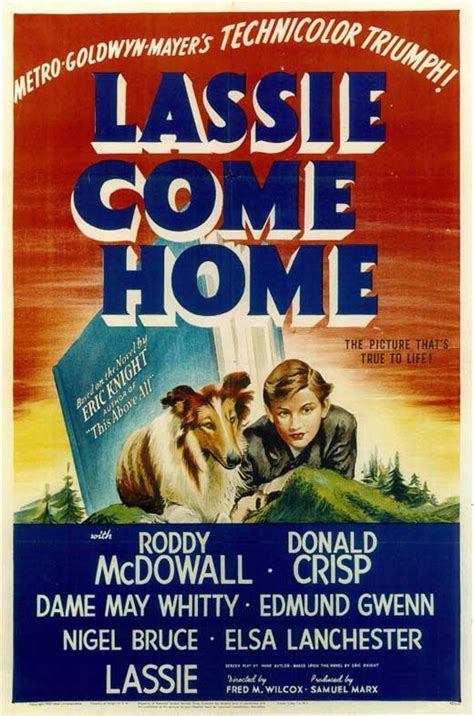 lassie come home posters from poster shop