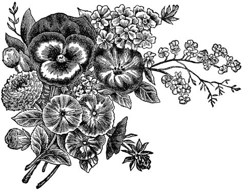 black and white flower clip clipart flowers black and white panda free clipart