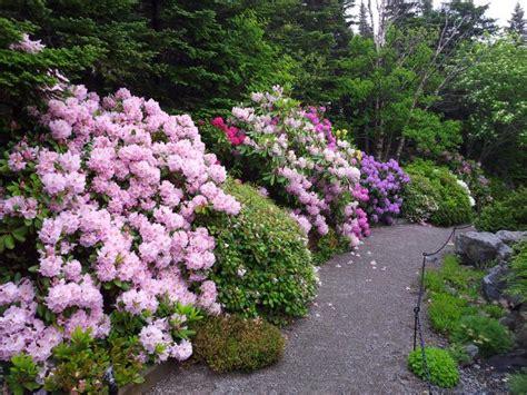 mun botanical garden botanical garden