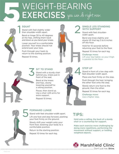 best 25 weight bearing exercises ideas on non weight bearing exercises for