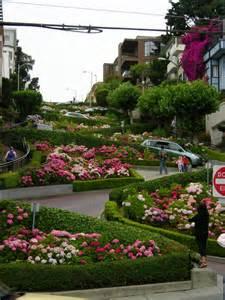 Lotus Garden Sf Lombard Windy Road San Francisco July 2007