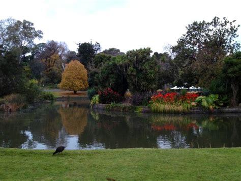 high tea melbourne botanical gardens high tea botanical gardens melbourne melbourne
