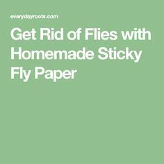 How To Make Sticky Fly Paper - 1000 ideas about fly traps on fly