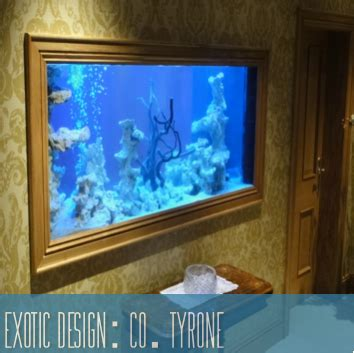 aquarium design ireland northern ireland co tyrone
