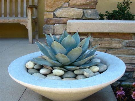 agave pot garden sculpture pots and urns pinterest