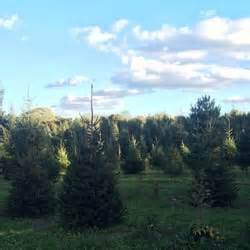 elwood pumpkin farm christmas trees 1500 e jericho
