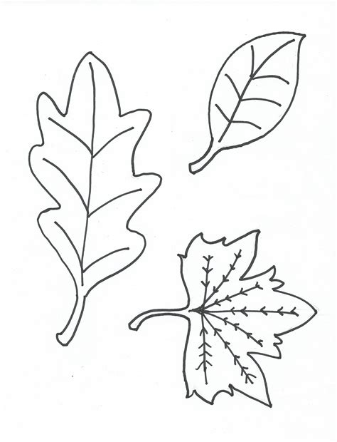 leaves printable coloring pages