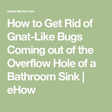 how to get rid of bathroom bugs 68 best images about must do on pinterest liquid coconut