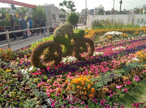 Flower Park Flower Garden At Sabarmati Riverfront Flowers Garden City