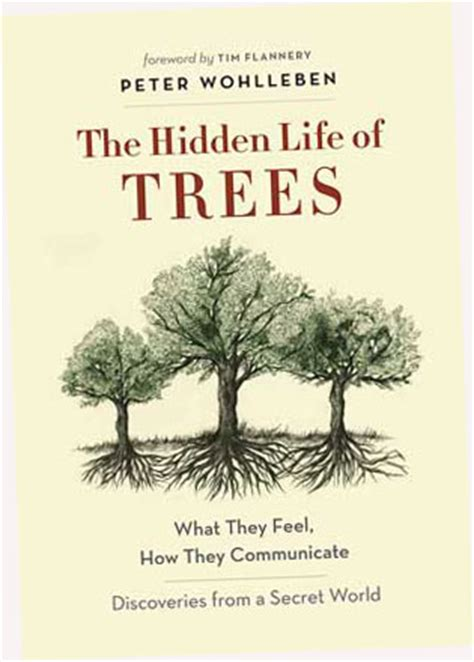 like trees books tree book makes new york times bestseller lists wsu news