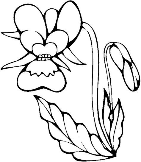Orchid Coloring Pages coloring pages for orchid flower coloring page