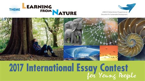 Essay Contest International by International Essay Contest For The Goi Peace Foundation