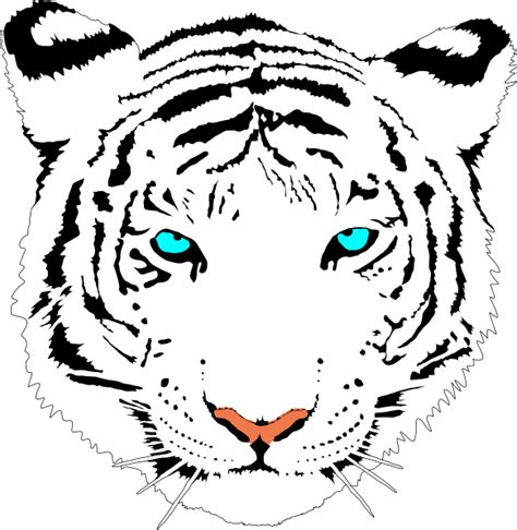 bengal tiger white clip art at clker com vector clip