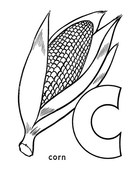 ear of corn coloring page coloring home