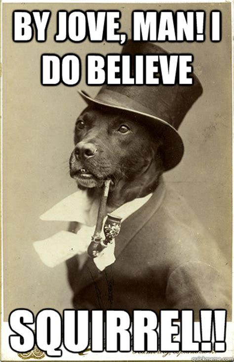 Benson Dog Meme - by jove man i do believe squirrel old money dog