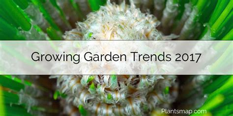 gardening trends 2017 growing garden trends 2017 plants map