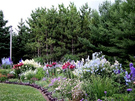 design exle 3 sixteen plants are assigned to more from lorraine s garden in ontario finegardening