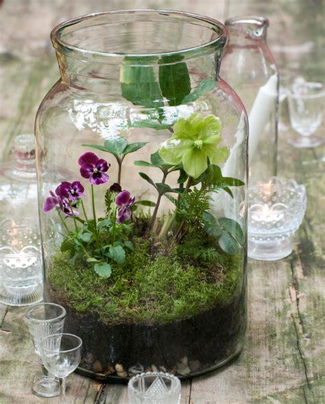 diy glass jar terrarium
