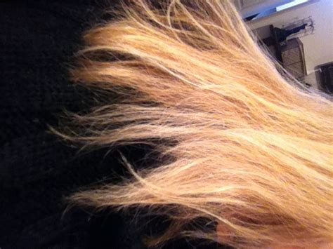 hair breakage help my hair is breaking what do i do elizabeth