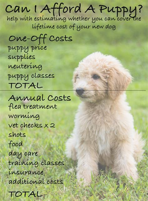 how much does a puppy cost how much does a cost by the happy puppy site