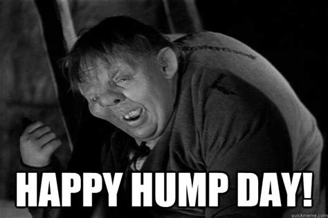 Happy Hump Day Meme - happy quot hump quot day everyone