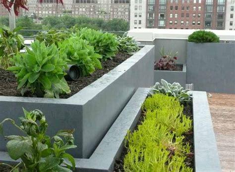 roof garden plants roof gardens gallery