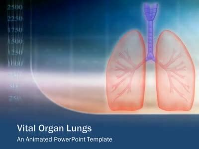 powerpoint themes lungs human lungs breathing