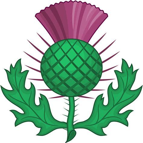 file scottish thistle heraldry svg wikipedia