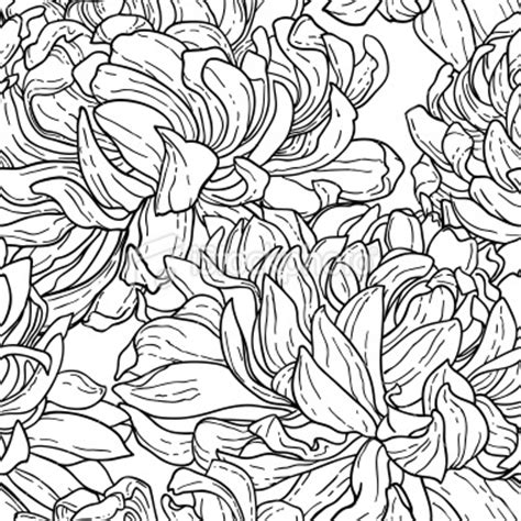 pattern flowers line 54 best black white designs images on pinterest