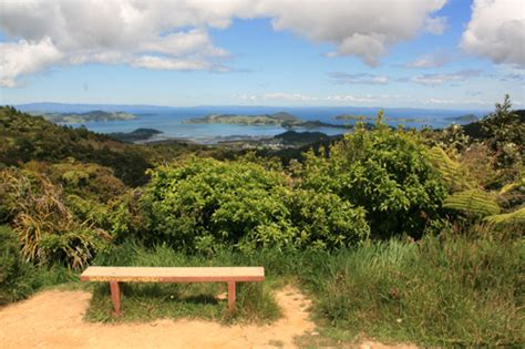 a view from the bench coromandel peninsula bench with a view dennershq