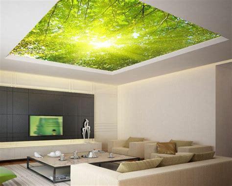 Papier Peint Plafond Trompe L Oeil by Quels Stickers Trompe L Oeil Choisir Id 233 Es En 50 Photos