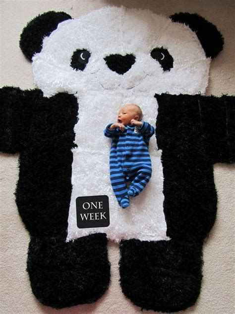 panda rug adorable rugs ideas and tutorials for noted list