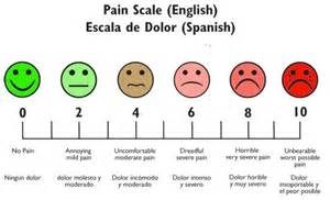 pain scale in english and spanish 171 student nurse laura