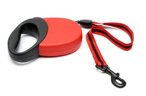 pros and cons of getting two puppies pros and cons of retractable leashes