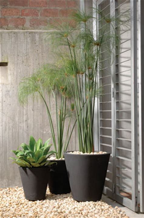 Modern Planters: Madison Planter 20 inch Height x 20 inch