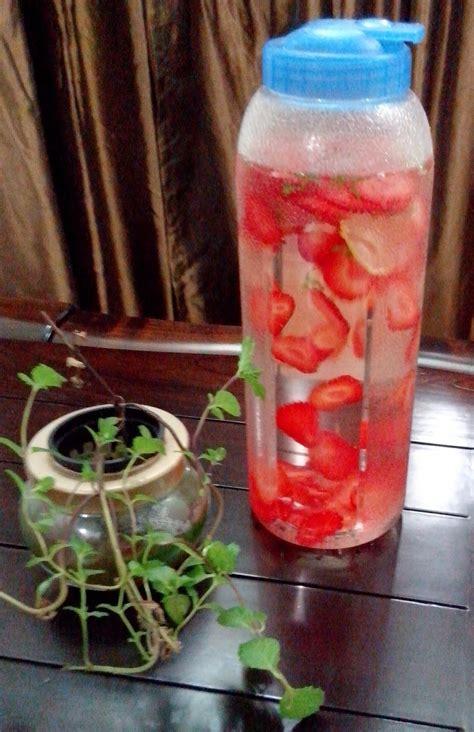 Jual Bibit Strawberry Bogor saya suka hidroponik tanam strawbery secara hidroponik