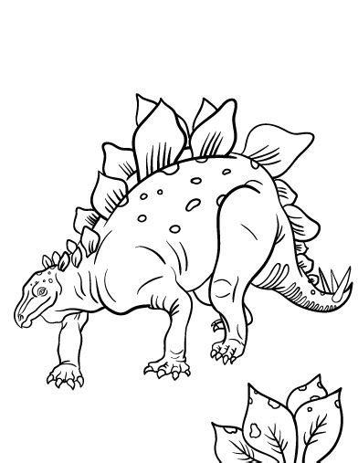 stegosaurus coloring page 38 best images about utd 248 dde dyr on the