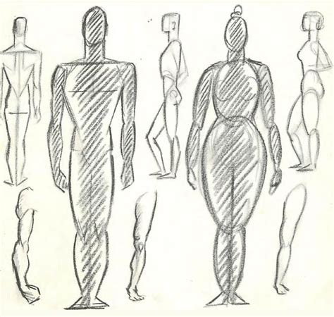 human pattern drawing how to draw the human figure drawing body head facial