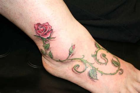 rose thorn vine tattoos 1000 images about memoriam on