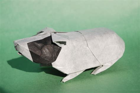 Origami Guinea Pig - pin origami guinea pig all about on