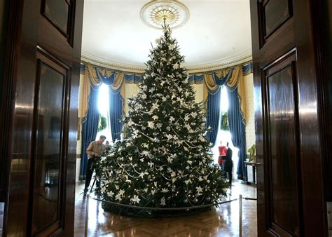 wisconsin christmas tree selected for official white house