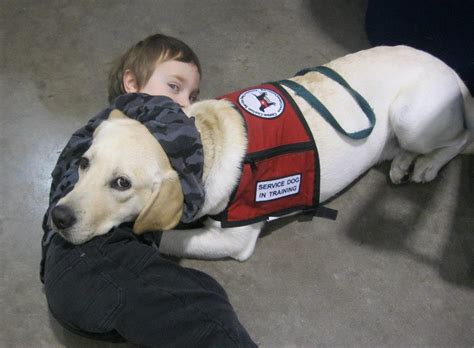 can dogs be autistic autism service program provides support for our community autism speaks