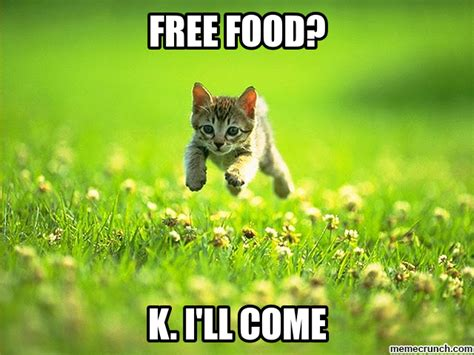 Cat Food Meme - free food