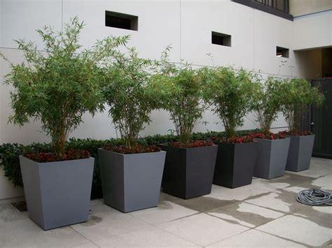 vasi per esterno economici vasi fiori vasi per piante modelli vaso