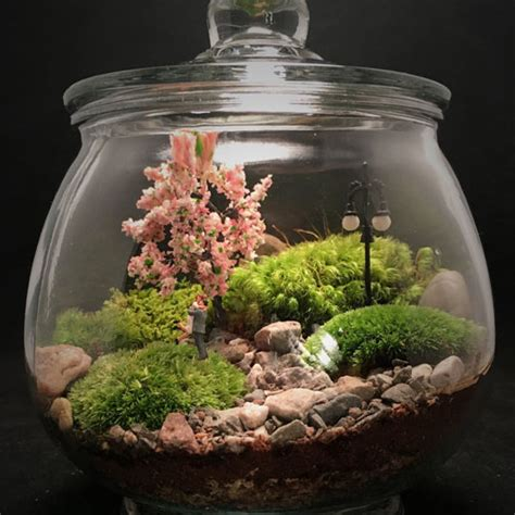 Wall Decor Home by Couple In The Park Terrarium Apollobox