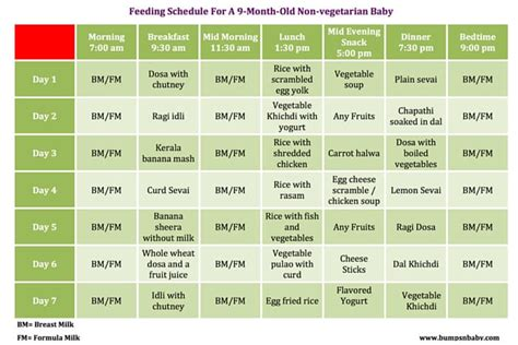 weight loss 9 month baby 9 month diet feeding schedule crmnews
