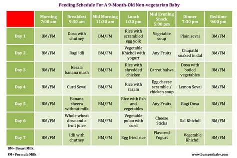protein 8 month baby 9 month diet feeding schedule crmnews