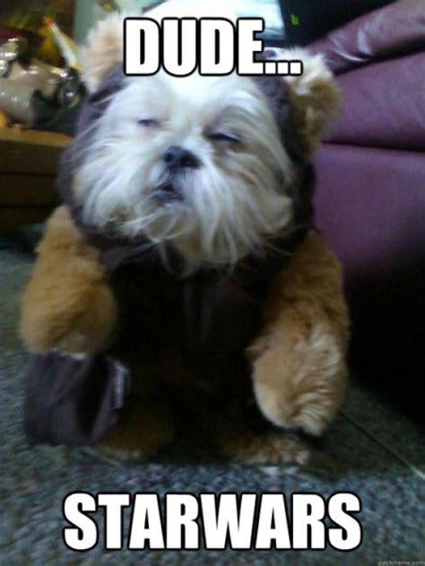 Stoned Dog Meme - stoned dog loves star wars dorkly post